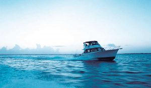 Parrot Cay boat