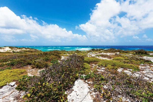 south caicos: luxury of unspoiled wild